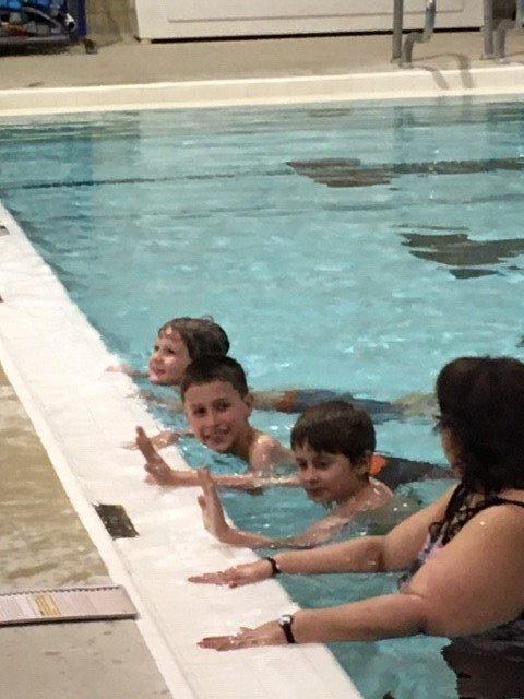 Bears swimming